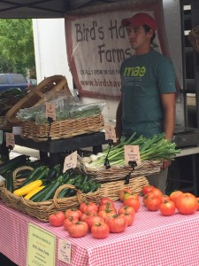 Bird's Haven | Caroline's Picks:  Farmers Markets